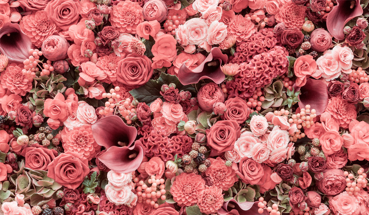 broadway-florist-slider-4